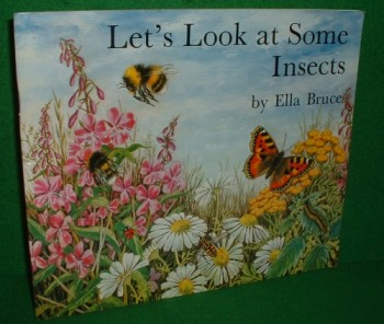 Image for LET'S LOOK AT SOME INSECTS