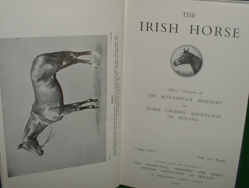 Image for THE IRISH HORSE  , 1956