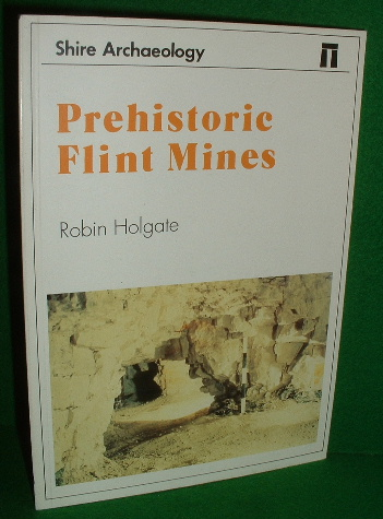 Image for PREHISTORIC FLINT MINES , SHIRE ARCHAEOLOGY Series No 67