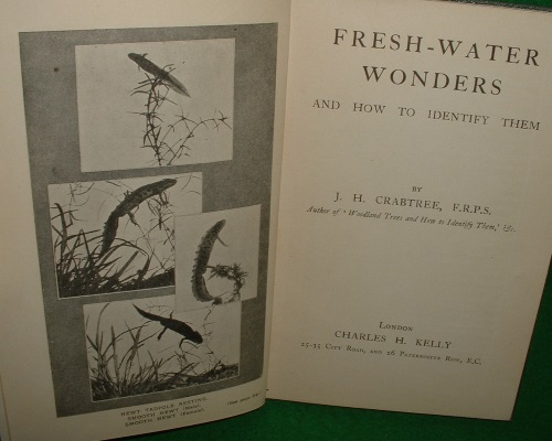 Image for FRESH-WATER WONDERS and How to Identify Them