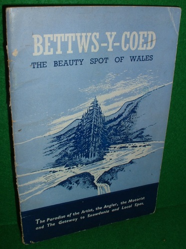 Image for OFFICIAL GUIDE TO BETTWS-Y-COED THE BEAUTY SPOT OF WALES