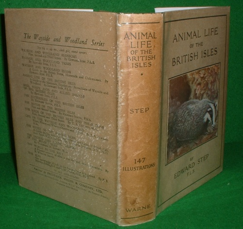 Image for ANIMAL LIFE OF THE BRITISH ISLES A POCKET GUIDE TO THE MAMMALS, REPTILES AND BATRACHIANS OF WAYSIDE AND WOODLAND