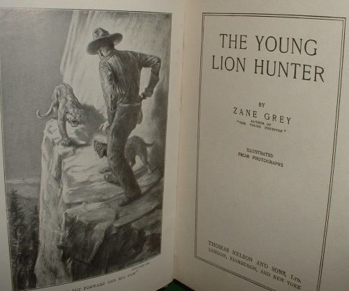 Image for THE YOUNG LION HUNTER