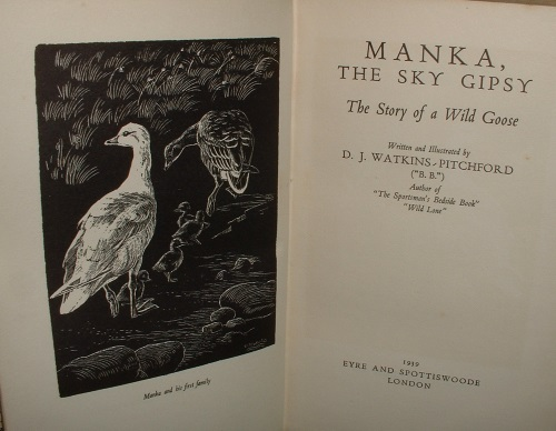 Image for MANKA, THE SKY GIPSY The Story of a Wild Goose