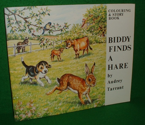 Image for BIDDY FINDS a HARE Colouring and Story Book