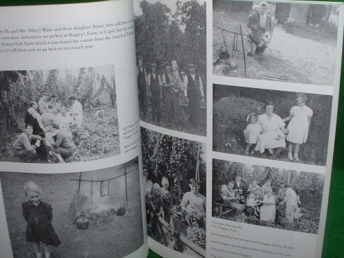 Image for HOP PICKERS of KENT & SUSSEX