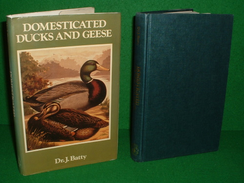 Image for DOMESTICATED DUCKS AND GEESE